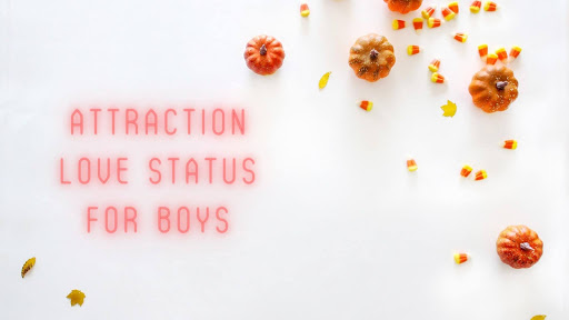 Attraction Love Status for Boys