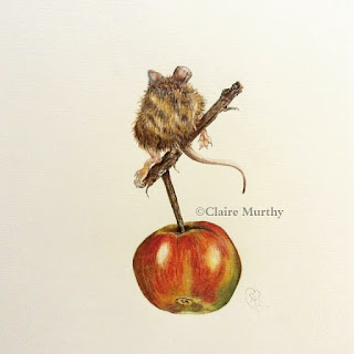 British wildlife art coloured pencil mouse