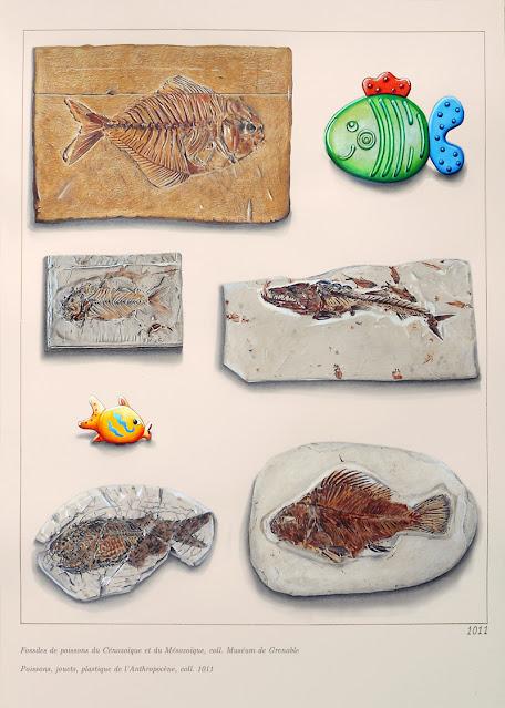 Planche de dessins de fossiles de poissons et deux jouets en plastique