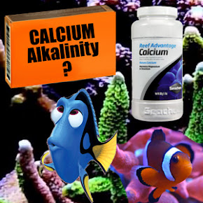 Calcium, Reef Advantage, Balling Method for marine aquarium chemistry