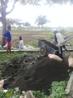Dikerjakan Asal-Asalan, Proyek Jaringan Irigasi Tingkat Usaha Tani (JITUT) Di Hentikan