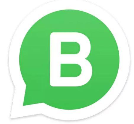 cara mengatur whatsapp business
