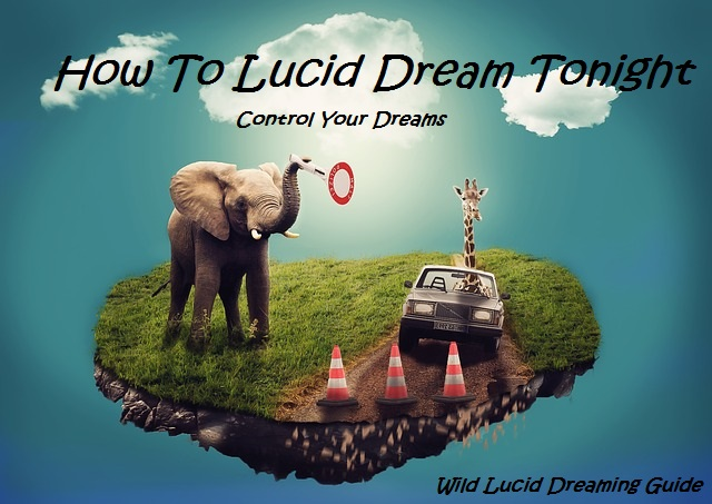 Dream Easy Way Tonight Lucid To