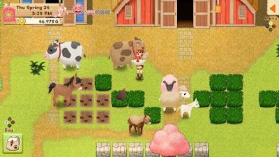 Gameplay Harvest Moon Light of Hope