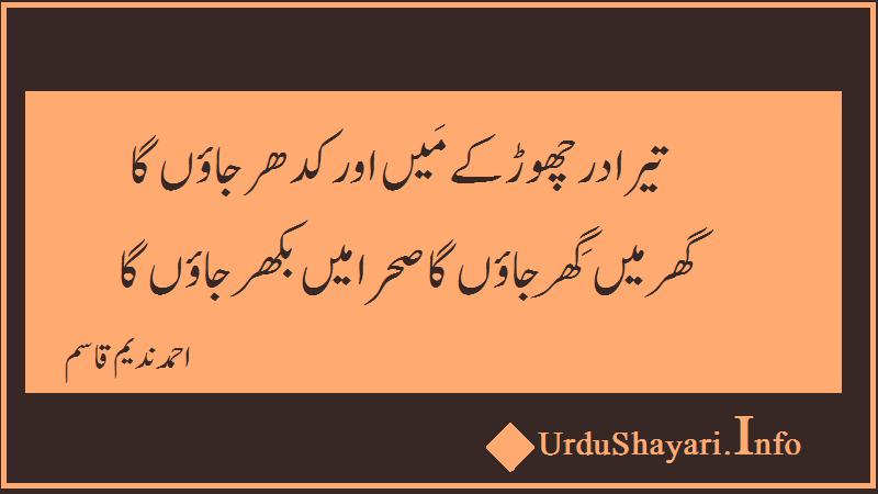 Tera Darr Chorr Ke Poetry Urdu - Ahmad Nadeem Qasmi Shayari. Sad Lines