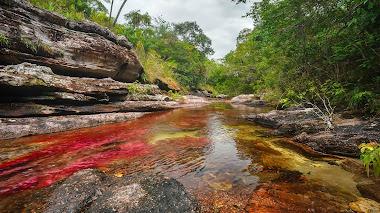 El río de los cinco colores