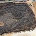 """[Ελλάδα]Η μεγαλύτερη  υπαίθρια"""" πυριτιδαποθήκη"""" ...Το μεγαλύτερο προσάναμμα  με χιλιάδες κομμένα πεύκα από το Μάτι ....[βίντεο]"""