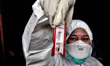 Menko PMK: Rapid Test di Atas Rp 150.000, Kena Sanksi
