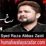 https://nohay.humaliwalayazadar.com/2020/05/syed-raza-abbas-zaidi-noha-ayyam-e-ali.html