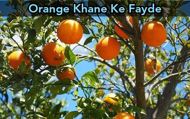 Santre Khane Ke Fayde in Hindi | Orange Benefits in Hindi