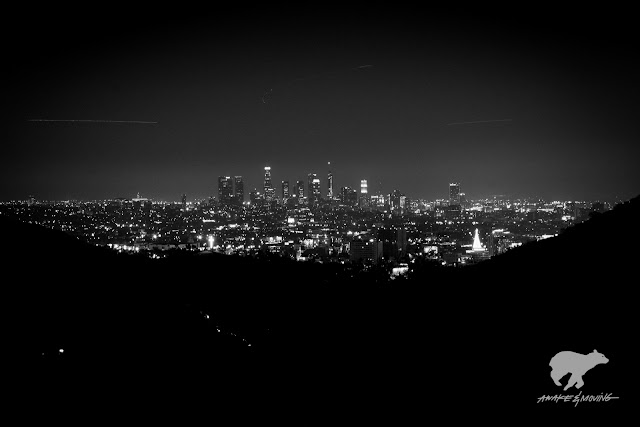 LA skyline is something magical. LA, CA.