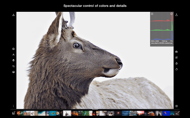 Polarr Photo Editor Pro full