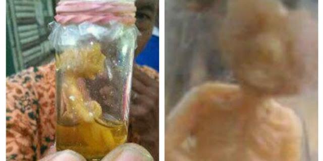 Ditemukan Sosok Manusia Kecil Dalam Botol Di Daerah Ini, Benarkah Itu Adalah Sosok Tuyul?
