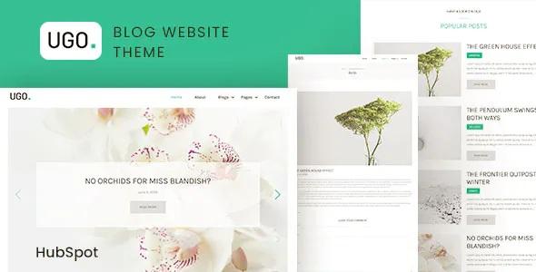 Best Modern Blog HubSpot Theme