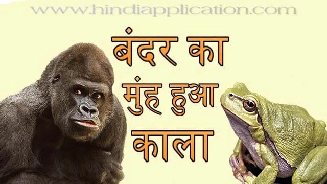 Monkey's face turned black hindi story