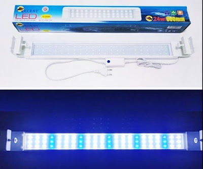 Lampu Aquarium Recent LED RCG-618-SW