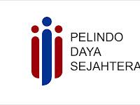 Lowongan Kerja PT Pelindo Daya Sejahtera - Penerimaan SMK,D3,S1 Oktober 2020