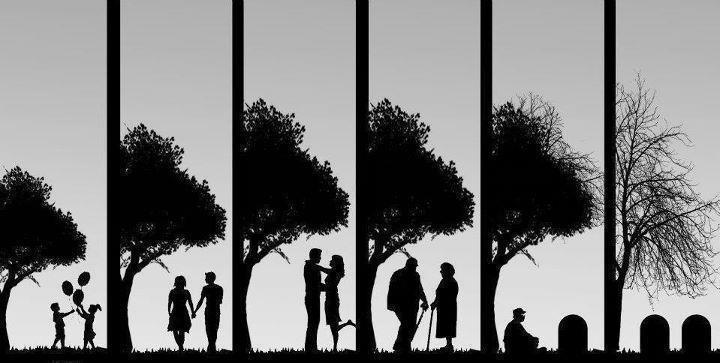 Amor Para A Vida Toda: Um Amor Para A Vida Toda