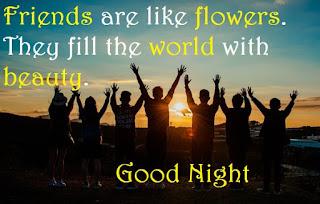 inspirational good night friends image