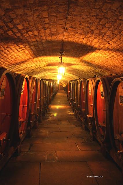 Barrels in the Historic Wine Cellar below a Hospital in Strasbourg