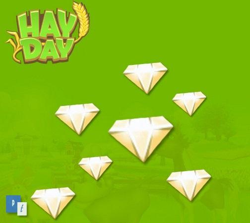 Cara Mendapatkan Diamond di Hay Day