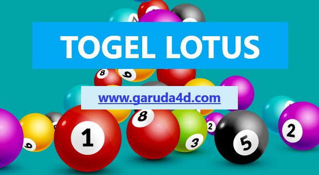 Lotus4D Online