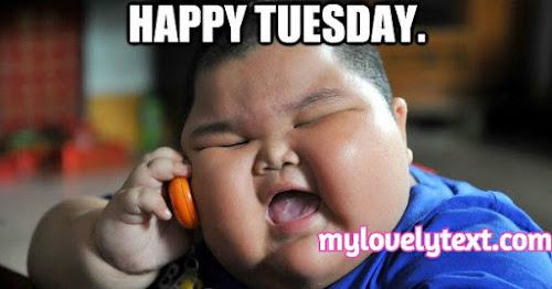 happy tuesday meme
