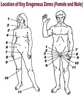 Pressure points for sexual arousal
