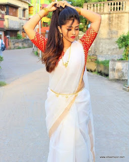 traditional saree look