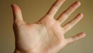 8 Fakta Unik Tentang Garis Tangan