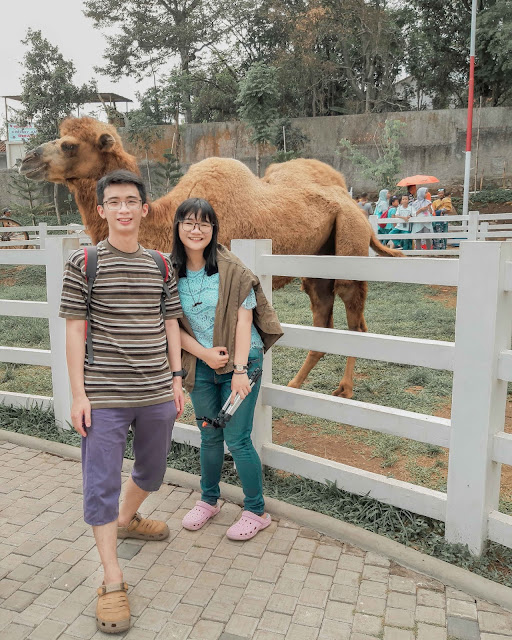 cimory dairy land prigen trawas tretes kuliner surabaya food blogger influencer vlogger couple goals