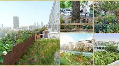 Reinventar y cultivar las calles de París 'Permiso para vegetar'