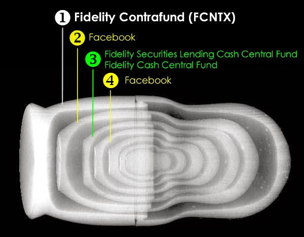 Fidelity Contrafund FCNTX Russian Nested Doll X-Ray showing Facebook holdings