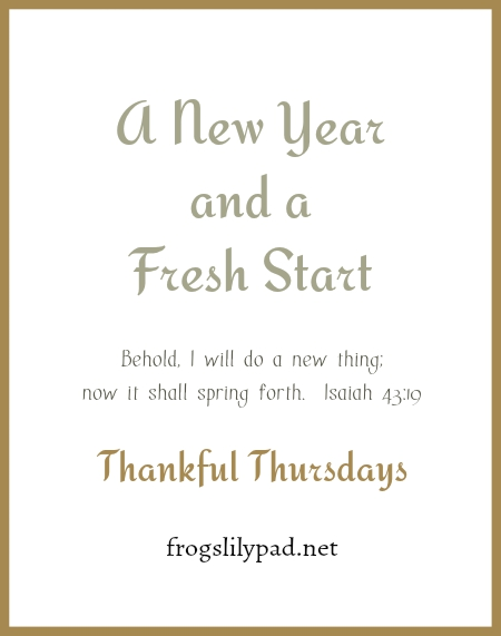 We are stewards of the time that God has given each of us and how we spend it matters. We have been given a New Year and a Fresh Start so we can serve Him. frogslilypad.net
