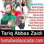 http://www.humaliwalayazadar.com/2017/10/tariq-abbas-zaidi-nohay-2018.html