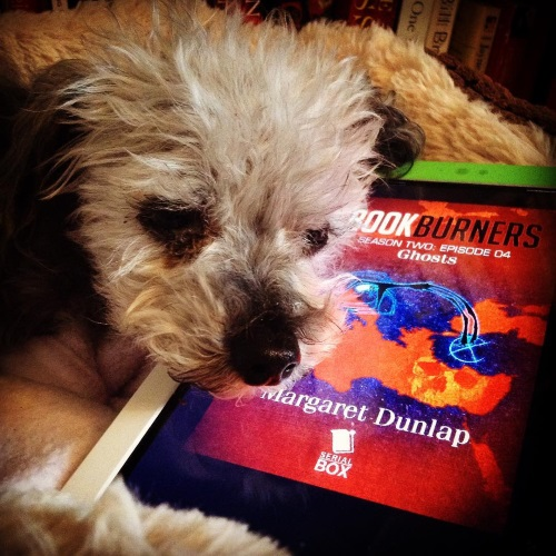 A fuzzy grey poodle, Murchie, rests his chin on a white Kobo with the cover of Bookburners Season Two Episode Four on its screen. The red cover features a speckled blue map of the Mediterranean. A thin, glowing figure emerges from Turkey and arcs towards Italy.