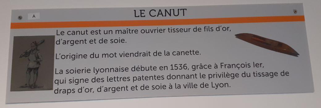 "Origine ""probable"" du mot canut"