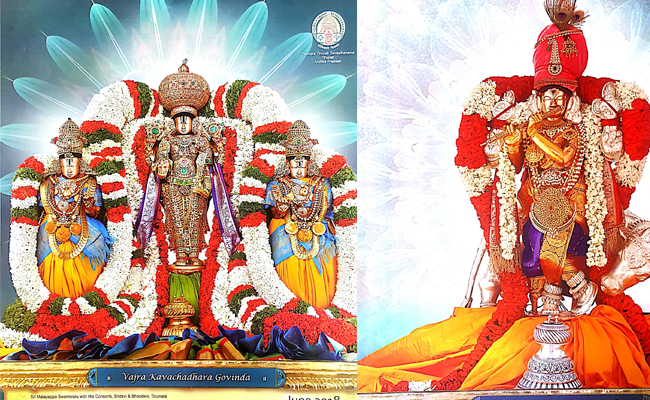 TTD New Photo Shoot For Tirumala Balaji
