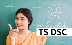 TS DSC Model Papers 2017