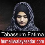 https://www.humaliwalayazadar.com/2019/09/tabassum-fatima-nohay-2020.html