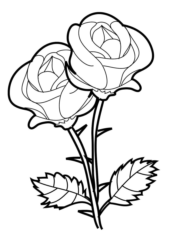 Mewarnai Bunga Mawar Yang Mudah