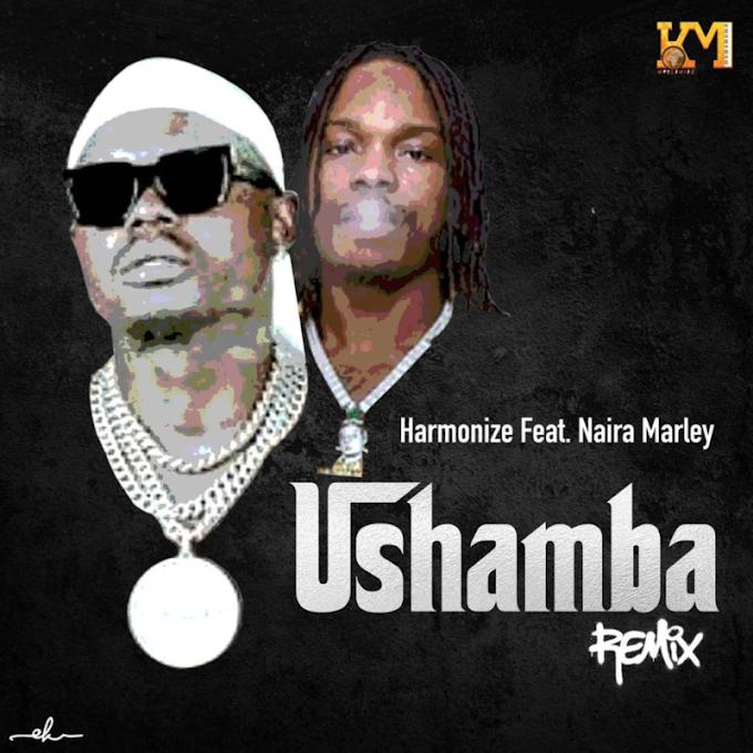 [Music] Ushamba (Remix) - Harmonize Ft Naira Marley