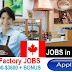 Factory Workers Job Opportunities in Canada - Apply Now