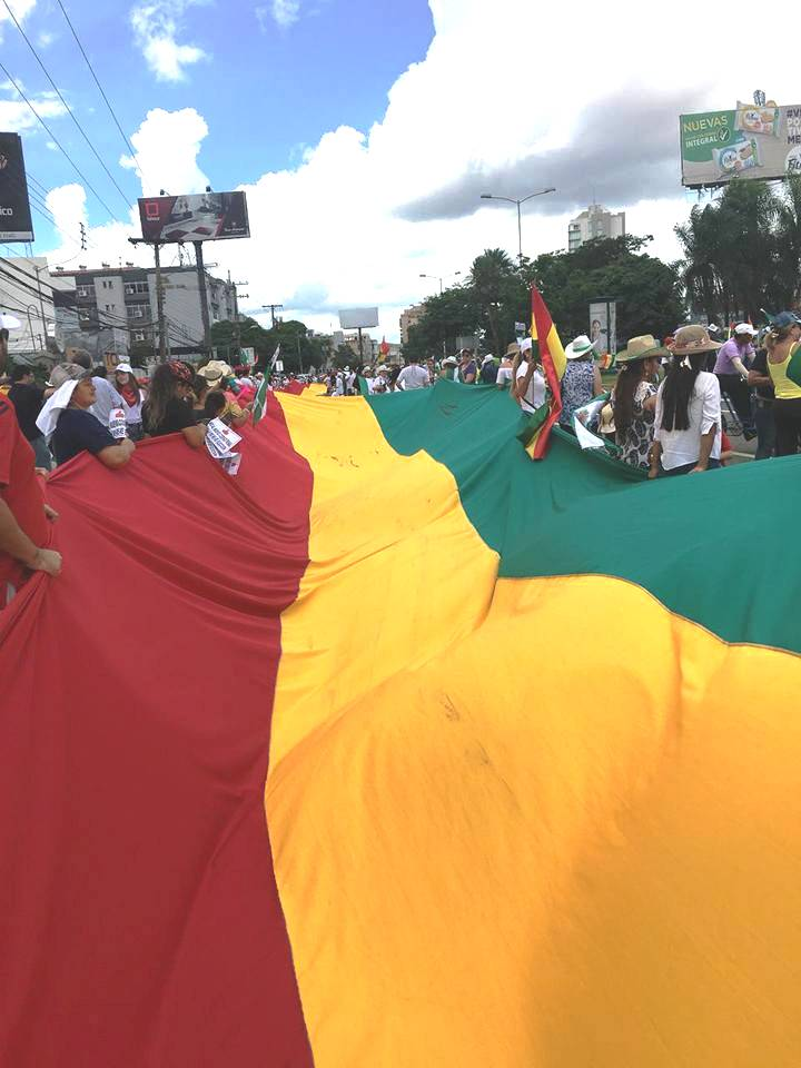 Colectivos ciudadanos desplegaron la Tricolor en seis departamentos del país / RRSS