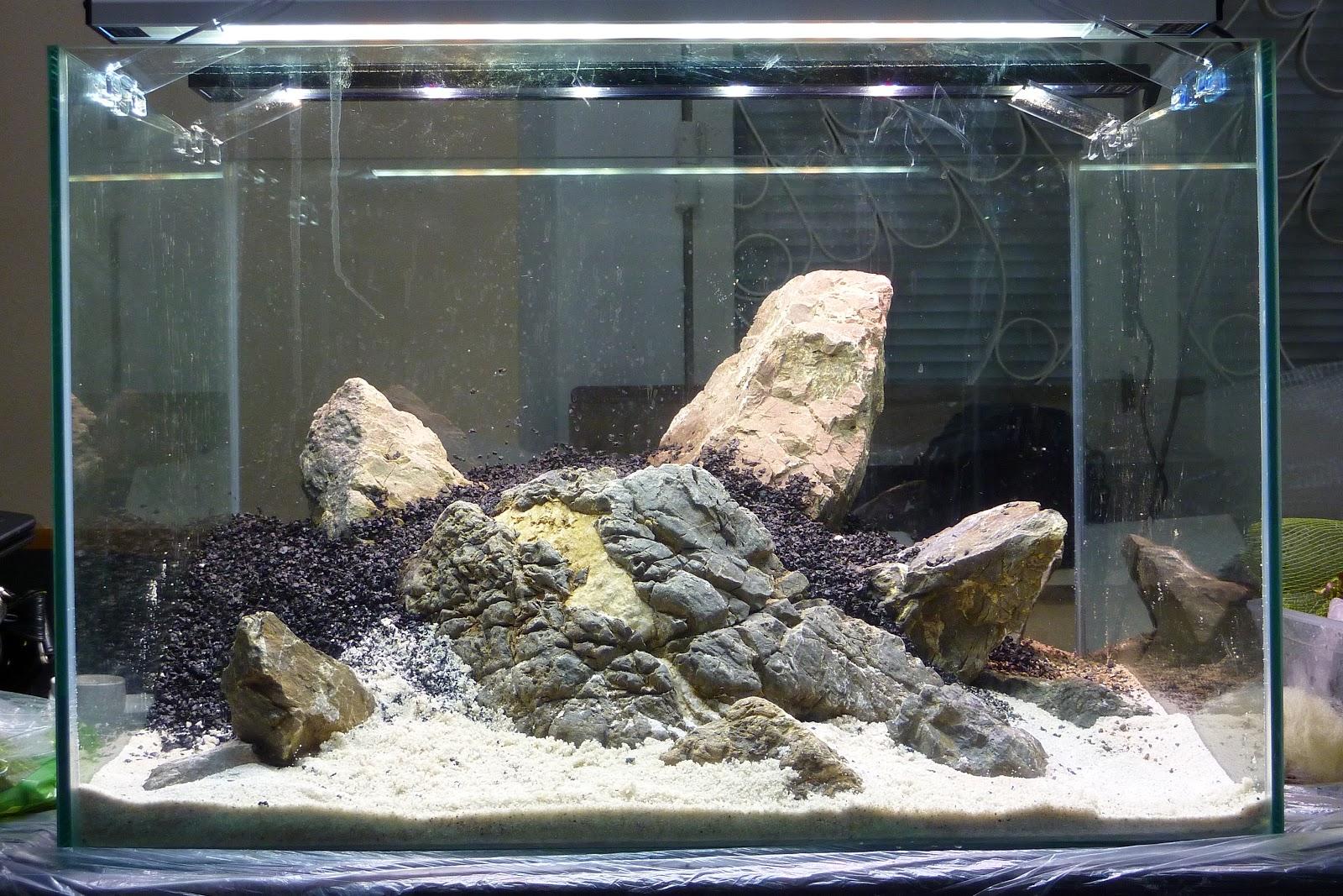 временем отдельной камни для аквариума фото собором планировали