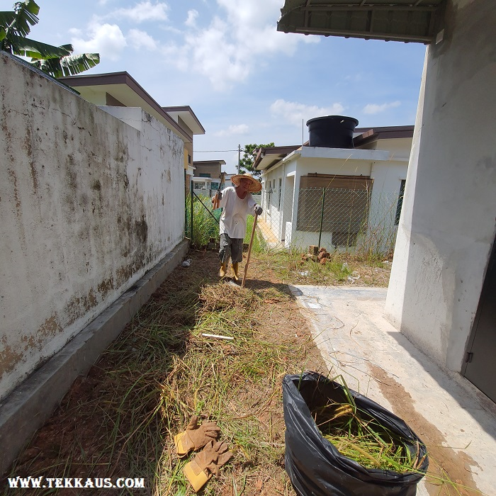 Clearing Weeds From House garden Lawn