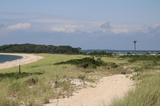 bird sanctuary out east in sag harbor long island new york