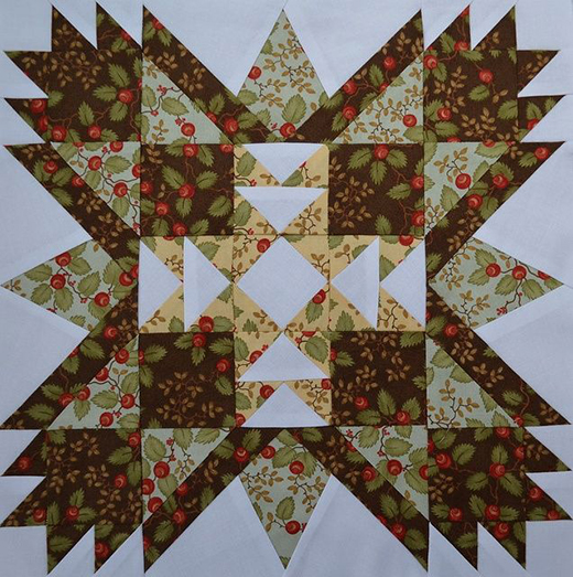 Brother Bear Block Designed by Marcia Hohn of Quilters Cache