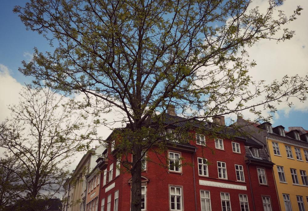 Copenhagen On A Budget Natbee S