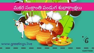 Sankranti Festival 2018 Wishes in HD collections